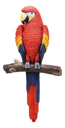 "Ebros Colorful Tropical Rainforest Paradise Rio Red Scarlet Macaw Parrot Perching On Branch Wall Hanging Decor Figurine 3D Plaque Sculpture Nature Lovers Birds Collectors Decor 14"" Tall"