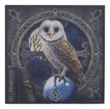 Ebros Witching Hour Pentagram Owl On Scrying Ball Spell Keeper Decorative Jewelry Box with Mirror Mini Trinket Box Gothic Wicca Art Figurine As Halloween Decor Artwork by Lisa Parker