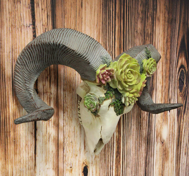Ebros Western Vintage Aged Faux Taxidermy Wildlife Horned Game Animal Skull Head with Painted Flowering Succulents Wall Mount Decor 3D Replica Skulls Hanging Plaque Sculpture (Corsican Ram Sheep)