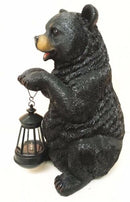 Rustic Garden Cute Black Bear Holding Solar Lantern Path Light Greeter Statue
