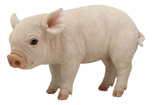 "Large Adorable Realistic Animal Farm Babe Pig Piglet Statue 15""L Rustic Decor"
