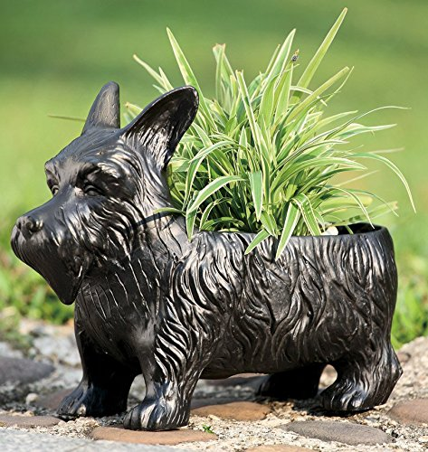 "Ebros Black Scottish Terrier Dog Garden Pot Planter Statue 12.5""Long Made of Resin Outdoor Patio Decorative Container Box For Flowers Plants Nursery"