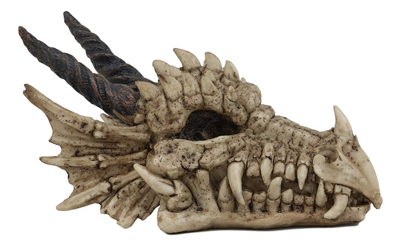 "Ebros Gift Jurassic Beowulf Elder Dragon Head Skull Realistic Fossil Statue 7.75"" Long Miniature Figurine Might and Magic"