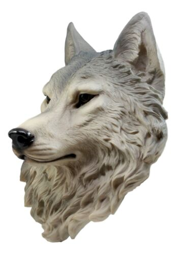 "Large Gray Timber Wolf Head Wall Decor Plaque 16.5""Tall Taxidermy Art Decor"