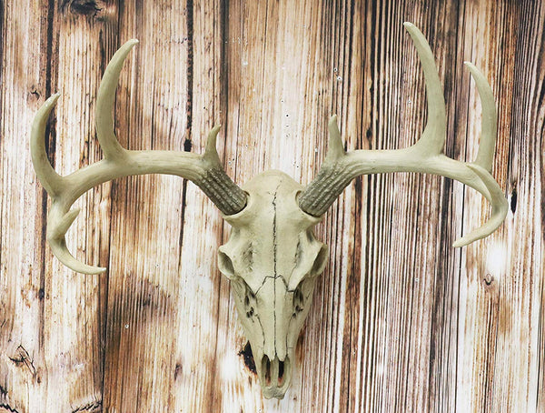 "Ebros 18.5"" L 10 Point Buck Head Wall Mount Resin Stag Deer Skull Antler Rack Bust Hunting Cabin or Lodge Decor Skull Antlers Home Accent"