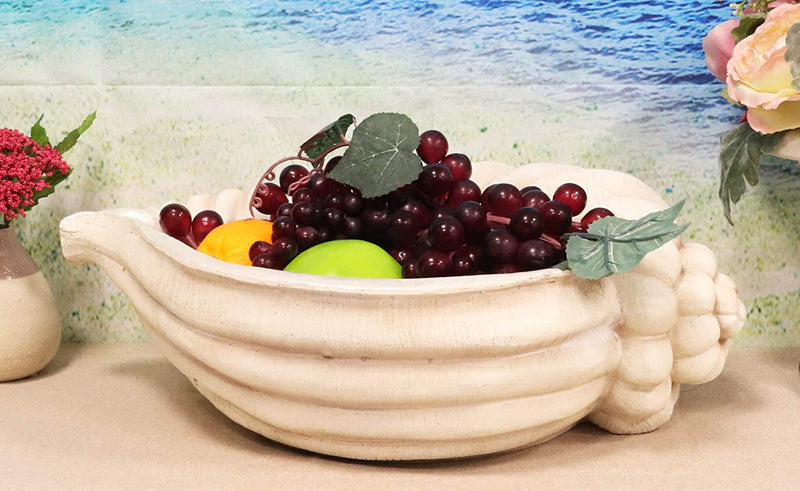 "Ebros 16"" Long Nautical Ocean Giant Sea Tun Shell Display Container Dish Bowl - Ebros Gift"