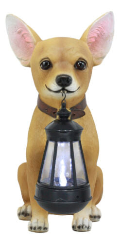 "Ebros Picante Mexican Chihuahua Dog Decor Path Lighter Statue 12.5""Tall with Solar LED Light Lantern Lamp This Little Light of Mine"