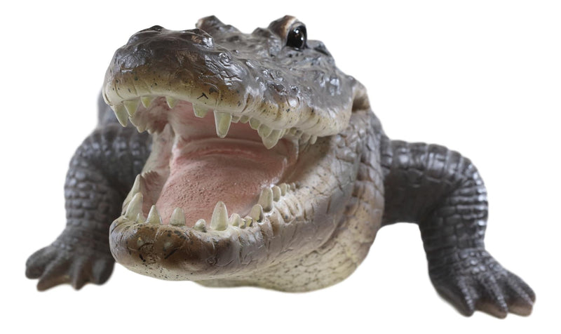 "Grand Scale Realistic Nile Crocodile Baring Razor Sharp Teeth Garden Statue 30""L"