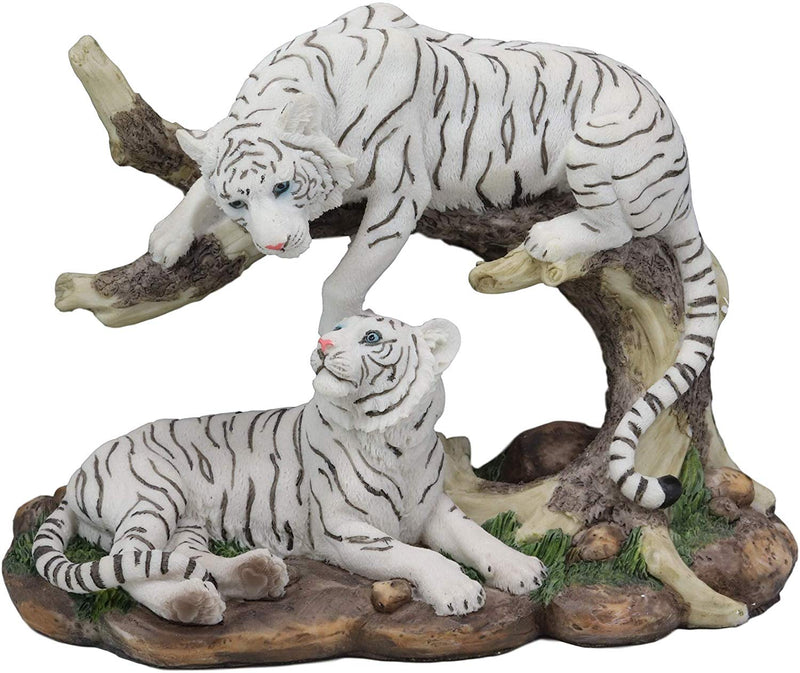 "Ebros 9.25"" Wide Albino Bengal White Tiger Couple Playing by Curved Tree Branch Statue As Predator Forest Tigers Giant Cats Jungle Frolic Decorative Figurine Perfect for Shelves Desktops Accent"