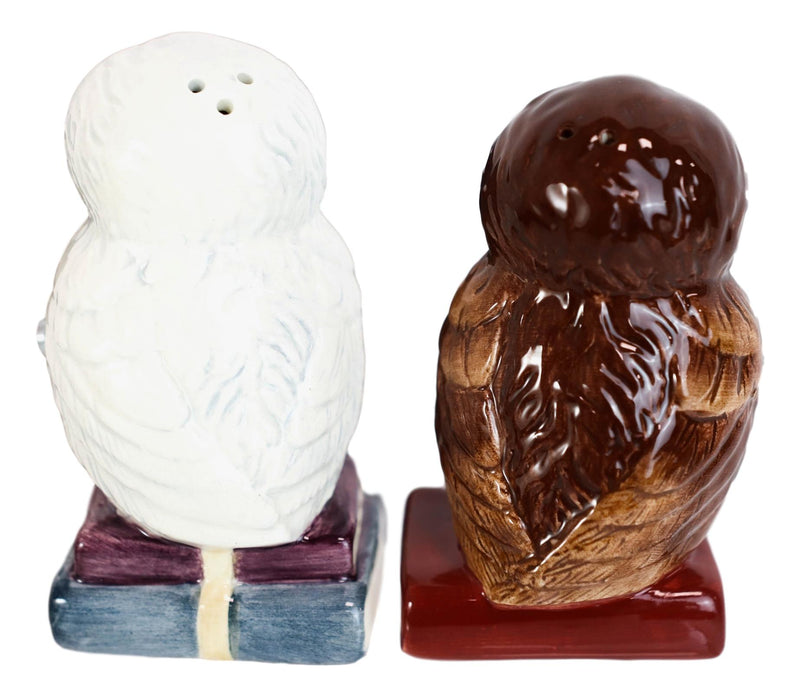 Snow White And Great Horned Brown Owls On Books Ceramic Salt Pepper Shakers Set