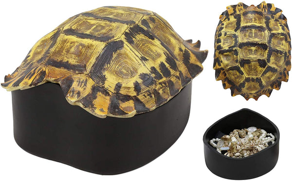 "Ebros Gift Nautical Reptile Realistic Elongated Tortoise Shell Decorative Trinket Box Figurine 8.25"" Wide Turtle Shells Rustic Jewelry Stash Box"