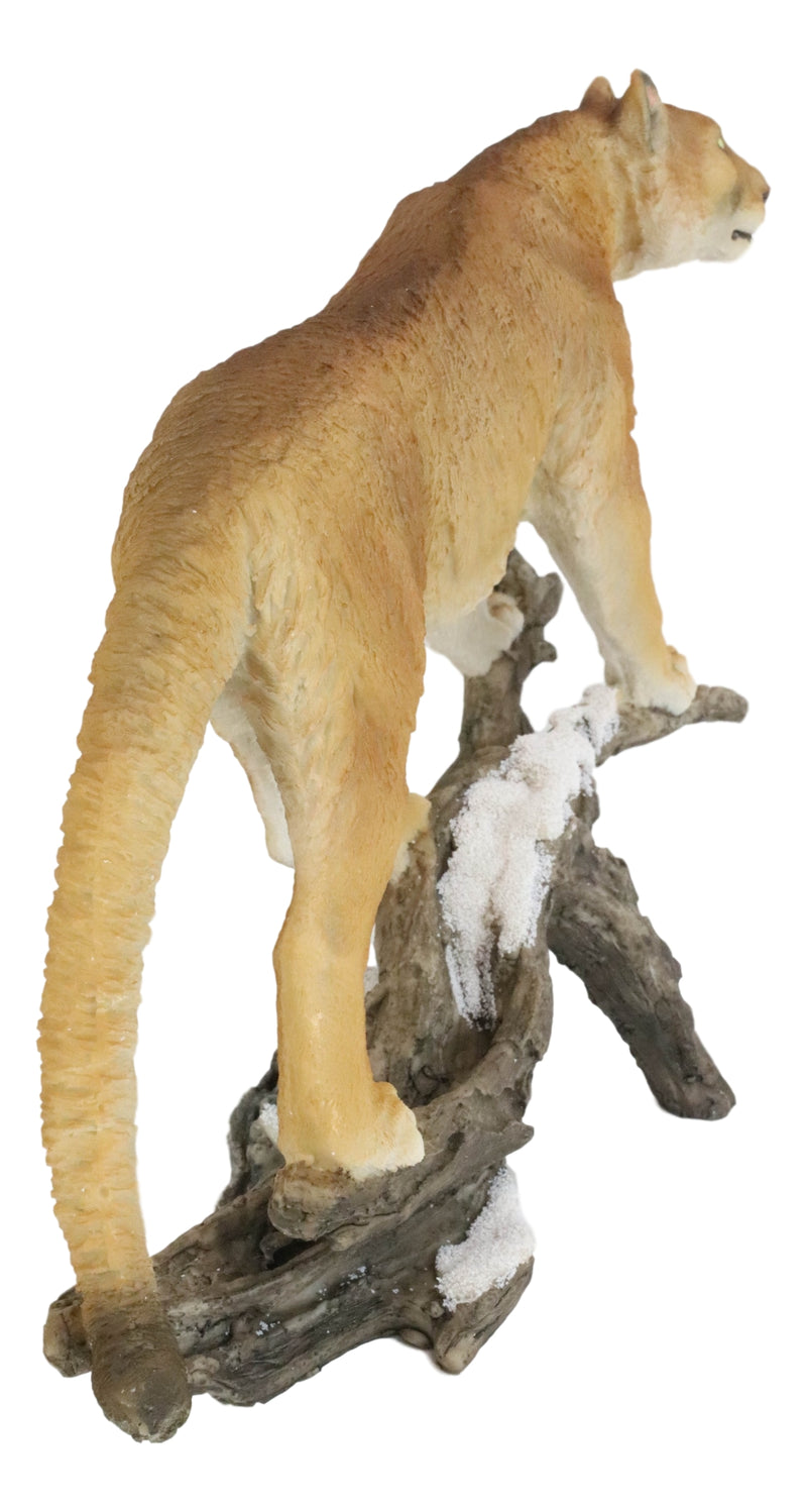 Mountain Lion Cougar Standing On Snow Capped Weathered Log Statue Wildlife Decor