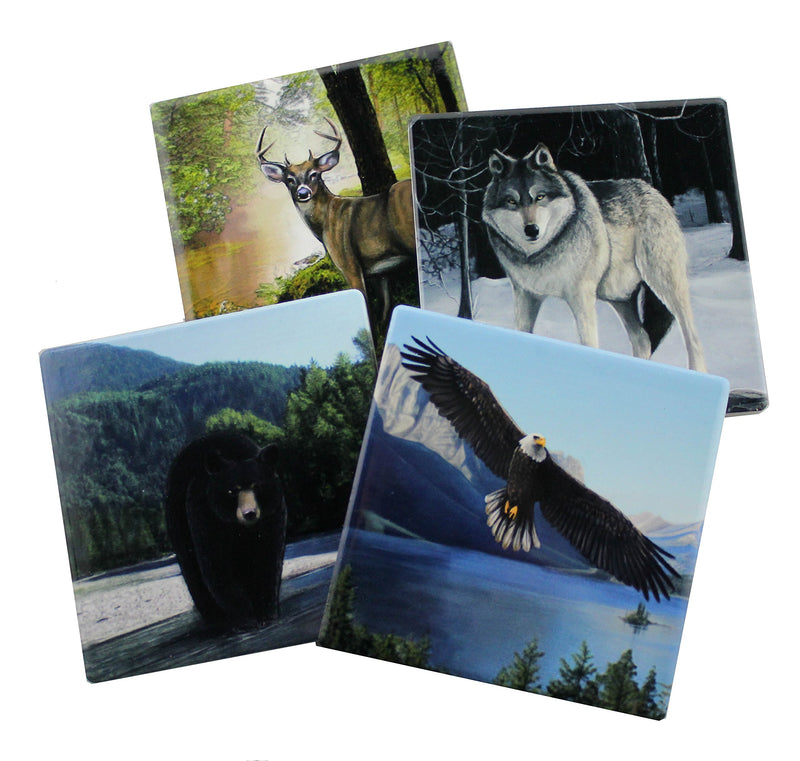 Forest Pack- Protect Your Furniture with These Decorative Coasters