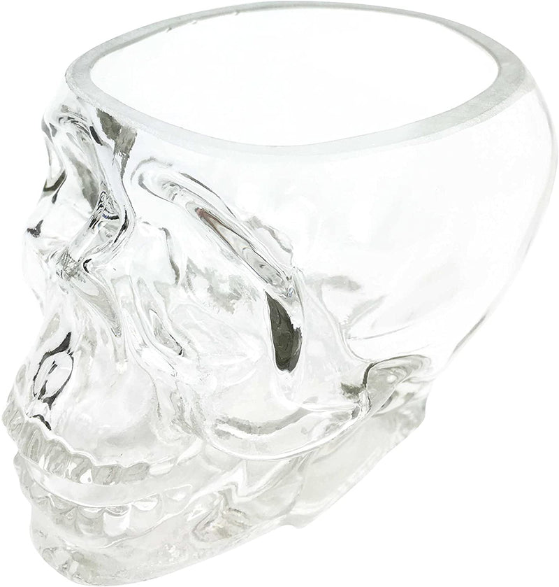 Skeleton Skull Glass Bowl Drink Stationery Office Holder Figurine Collectible