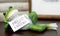 Corny Green Frog With Hello Sweet Cheeks Sign Decorative Toilet Topper Figurine