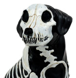 "Day Of The Dead Bone Skeleton Dog Statue 7.5""H X-Ray Canine Skeleton Anatomy"