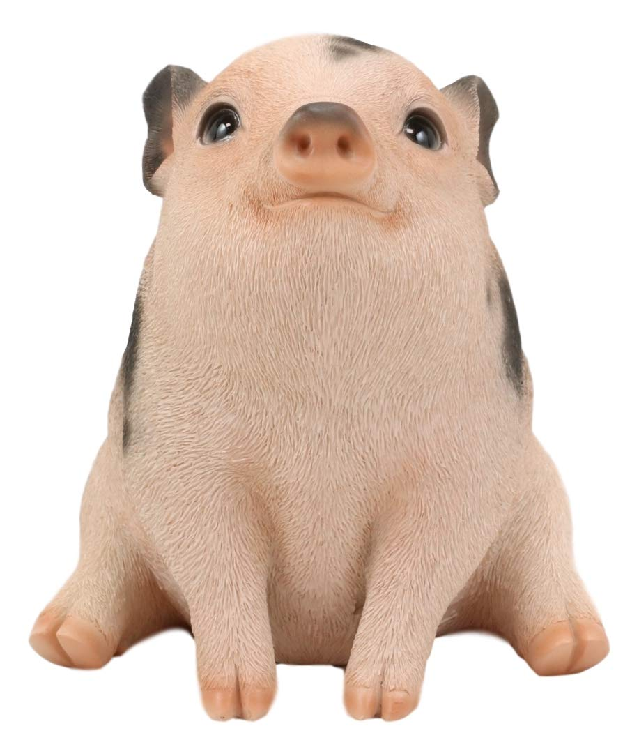 """Ebros Napoleon Fat Piglet Pig Statue 6/"""" Long with Glass Eyes Piggy Figurine"""