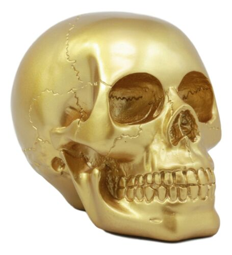 Pirate's Loot Gold Skull Statue Day Of The Dead Skull Head Gothic Resin Figurine