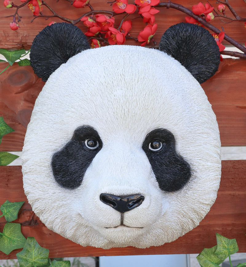 "Kung Fu Master Po Large Giant Panda Bust Wall Decor Plaque 12.75""Tall Taxidermy"