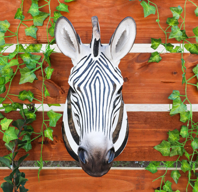 "Madagascar Large Zebra Head Wall Decor Plaque 16""Tall Taxidermy Decor Sculpture"