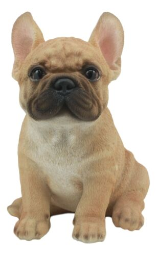"Realistic Lifelike French Bulldog Puppy Statue 6""H Cute Frenchie Dog Figurine"