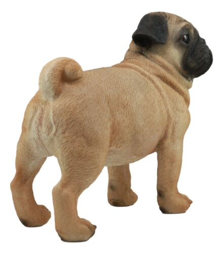 "Ebros Large Realistic Fawn Pug Dog Statue 12""L Fine Pedigree Dog Breed Pugsy"
