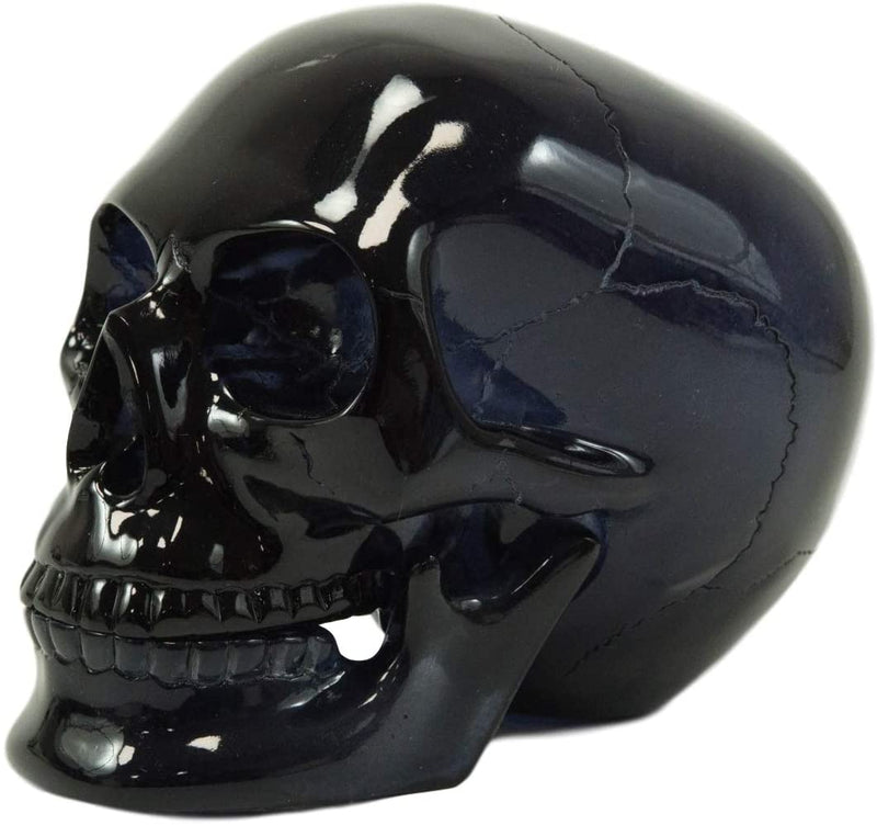 Ebros Black Translucent Jointed Cranium Skull Statue with Removable Jaw Bone
