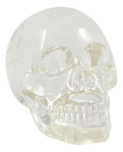 "Clear Translucent Witching Hour Gazing Skull Statue 5.5""Long Made Of Acrylic"