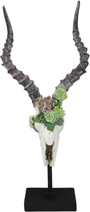 Ebros Western Vintage Aged Faux Taxidermy Greater Kudu Antelope Animal Totem Skull Head with Painted Flowering Succulents On Museum Gallery Mount Decor 3D Statue Replica Skulls Plaque Sculpture