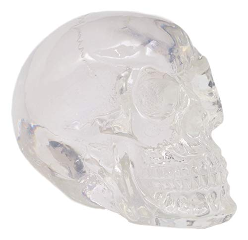 "Ebros Clear Translucent Witching Hour Gazing Skull Miniature Figurine 2.5"" Long"