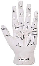 Ebros Psychic Fortune Teller Chirology Palmistry Hand Palm Figurine (White)