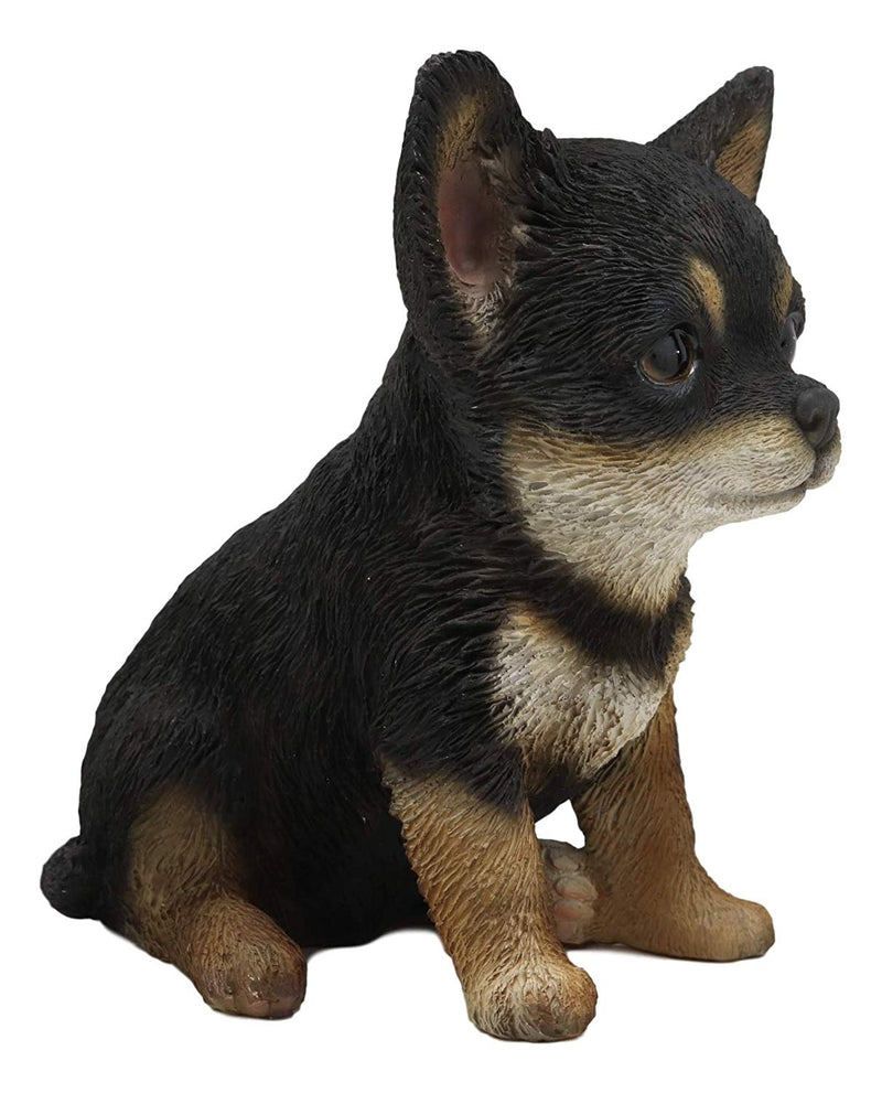 "Ebros Chihuahua Dog Puppy Sitting Statue 6.25"" High with Glass Eyes Figurine"