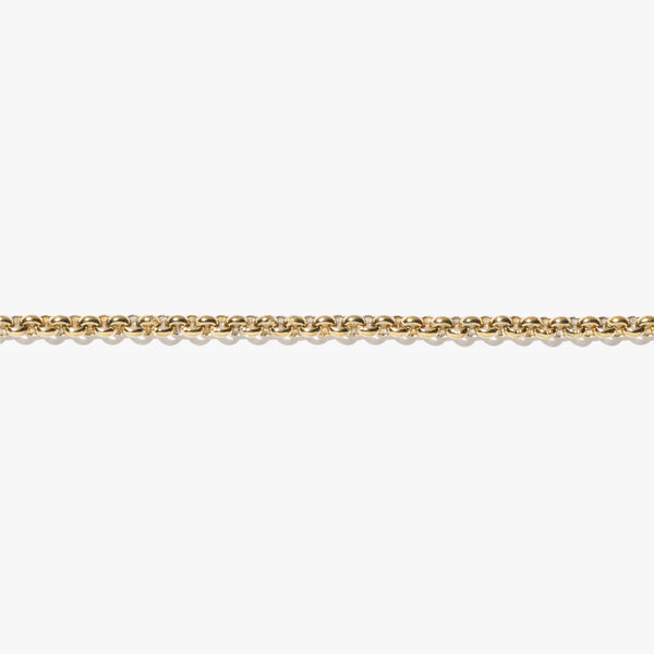 Anklet - Thick Rolo Anklet - Gold