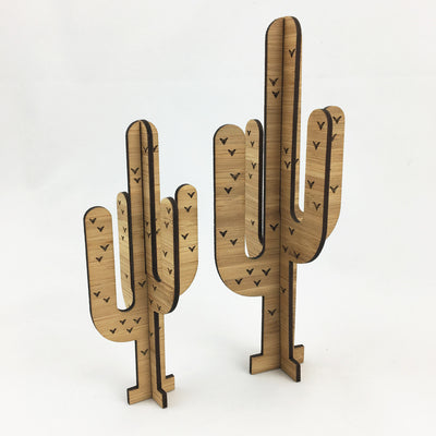 3D Cactus - Set of 2