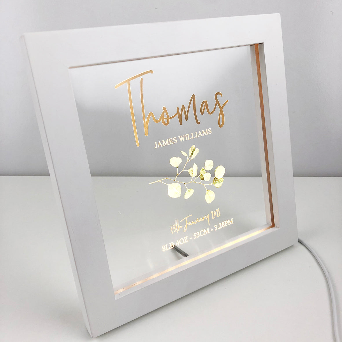 Eucalyptus Branch Personalised Light Frame
