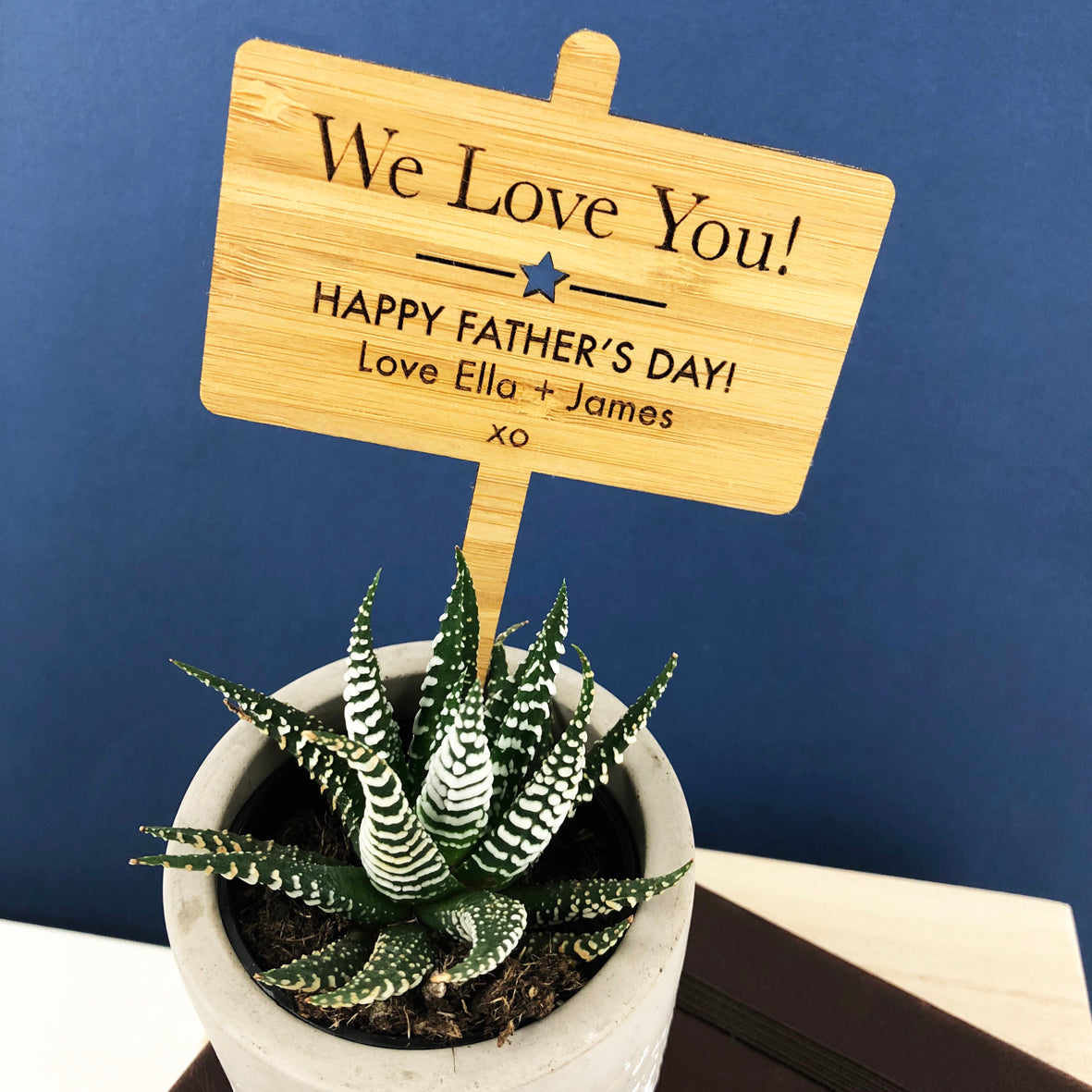 Father's Day Personalised Bamboo Planter Stick