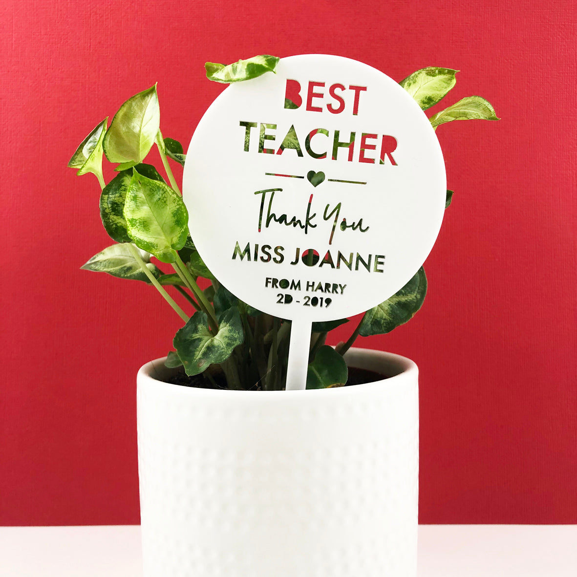 Mini Teacher Thank You Planter Stem