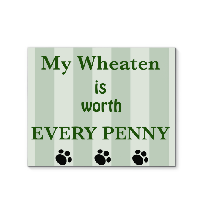 MY WHEATEN IS WORTH EVERY PENNY