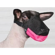 Deluxe Adjustable Sheep Muzzle-Weaver Leather Livestock-Ludlow Livestock Supply