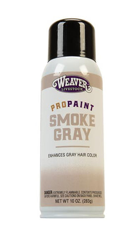 Pro-Touch Smoke Gray Paint