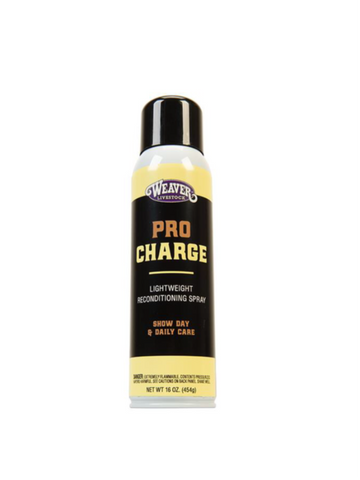 69-2201- ProCharge Reconditioning Spray