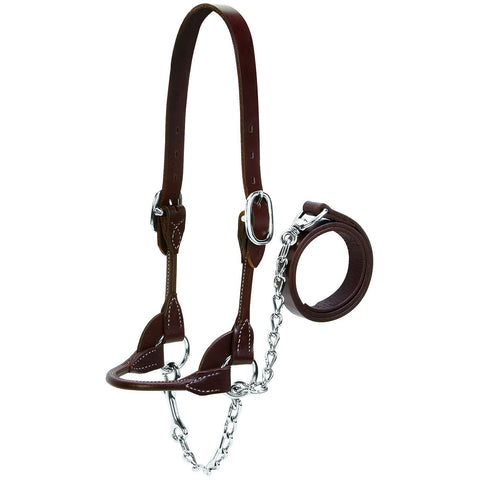 Round Show Halter, Brown, Sizes S, M, L, XL-Weaver Leather Livestock-Ludlow Livestock Supply