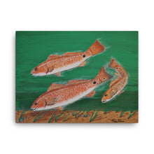 """Redfish Trio"" by Ricky Trione  Printed on Gallery Wrapped Canvas"