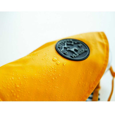 Elspet Seashell Pet Drinking Fountain