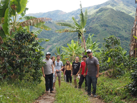 The crew at the Genova Coffee Farm