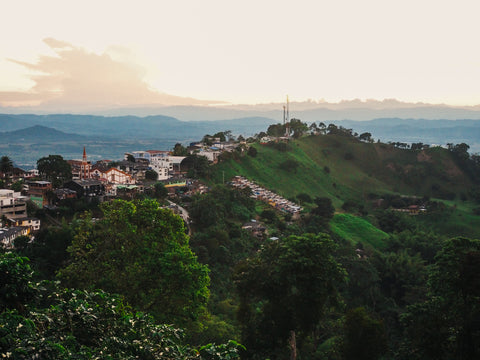 Panoramic view from the Buenavista Colombia San Alberto Cafe