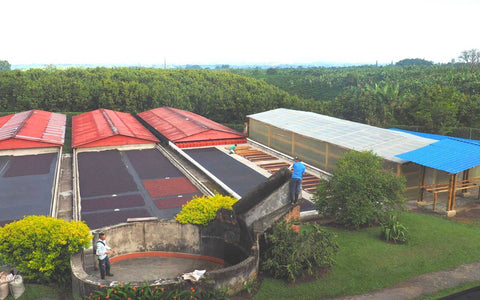 The natural processing plant of Finca La Pradera