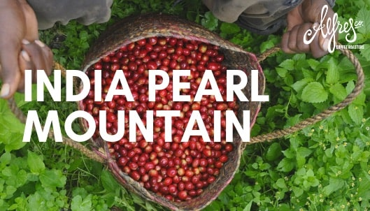 India Pearl Mountain Single Origin Coffee