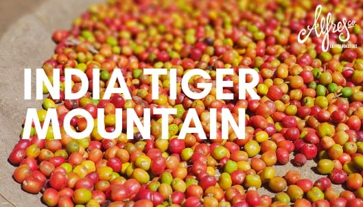 India Tiger Mountain Single Origin Coffee