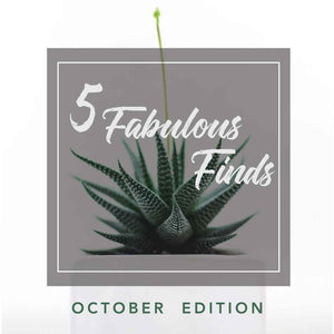 5 Fabulous Finds (October)